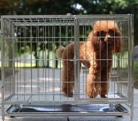 chuồng cho chó 5 - 7 kg