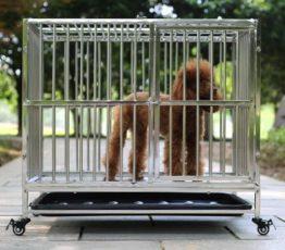 Chuồng cho chó nặng từ 10 - 15 kg