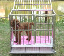 chuồng cho chó 7 - 10kg
