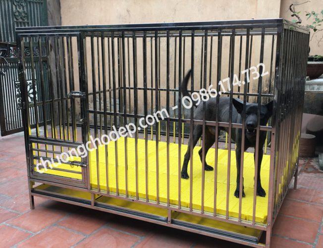 Chuồng chó inox tại Hà Nội và Sài Gòn - tpHCM