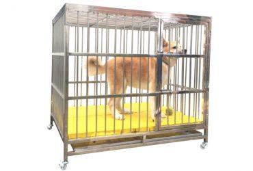 Chuồng cho chó nặng từ 20–30kg