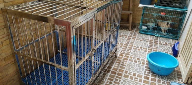 bán chuồng chó inox 90x60 tphcm
