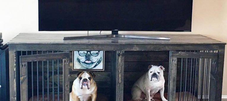 cách chọn mua chuồng chó