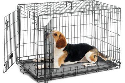 chuồng chó giá rẻ
