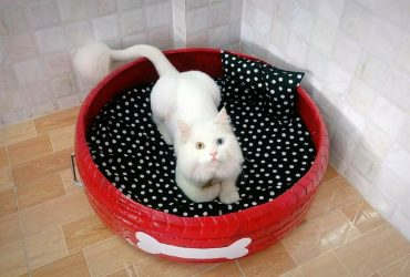 Đệm ổ bằng lốp xe cho chó mèo