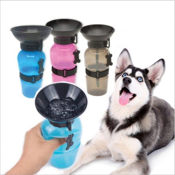 bình nước cho chó mèo