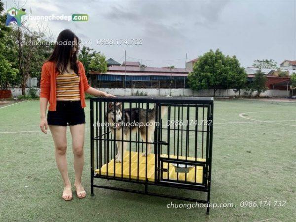 chuong cho sat S115 10
