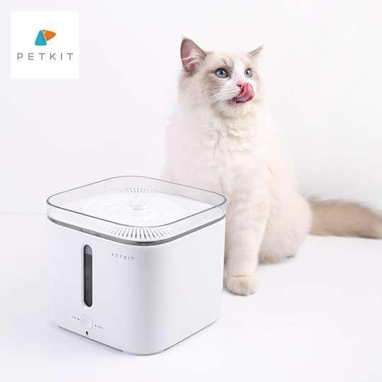 máy cấp nước tự động cho mèo petkit